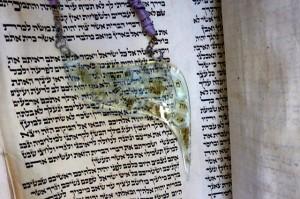 Torah.joy